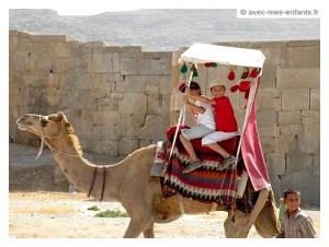 voyage-en-famille-iran-avec-les-enfants-persepolis-chameau