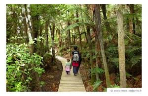 nouvelle-zelande-en-famille -rotorua -foret - redwoods