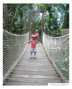 guadeloupe-en-famille-blog-voyage-famille-parc-des-mamelles