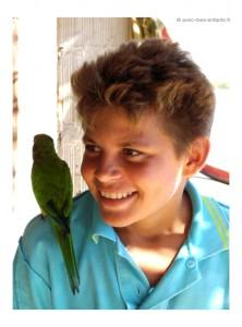 brésil-en-famille-nordeste-blog-voyage-famille-perroquet