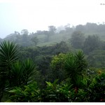 voyage-costa-rica-en-famille-nature-arenal