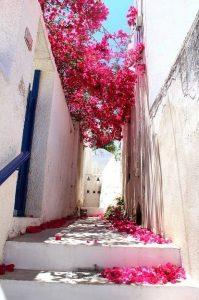 blog-voyage-cyclades-en-famille