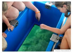 seychelles-en-famille-blog-voyage-famille-bateau-fond-verre-mahe
