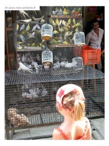 voyage-inde-en-famille-bombay-crawford-market