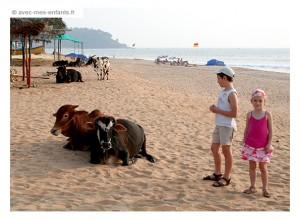 voyage-inde-en-famille-goa-plage-candolim