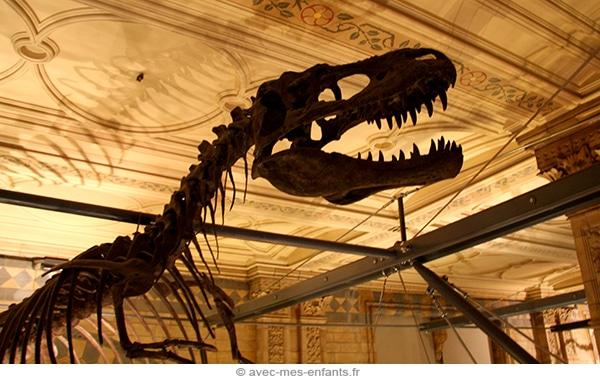 Londres-en-famille-museum-histoire-naturelle-dinosaures