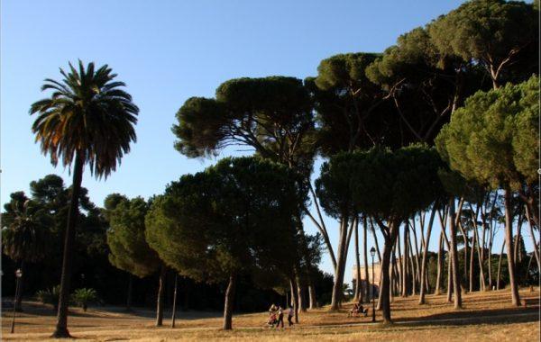 rome-en-famille-villa-doria-pamphili-parc