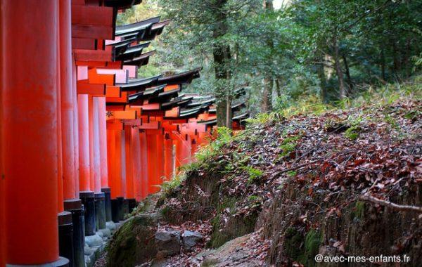 fushimi-inari-kyoto-en-famille-foret