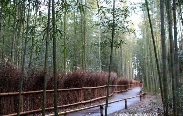 kyoto-en-famille-arashiyama-bambous