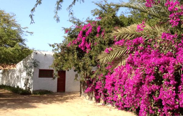 cap-vert-villa-morabeza-gust-house-mindelo-sao-vicente