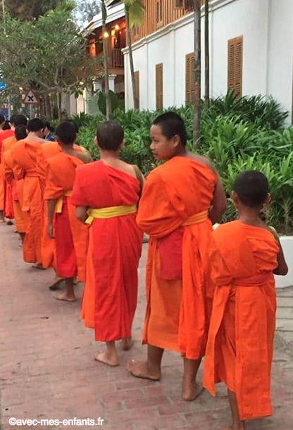 laos-en-famille-takbat-moines-luang-prabang