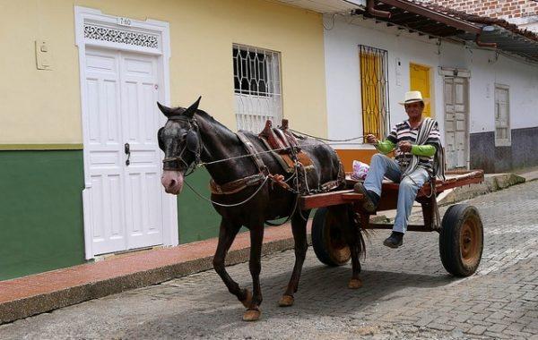 colombie-en-famille-jerico-charrette
