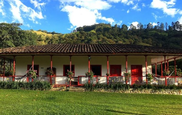 colombie-en-famille-salento-hotel-cabana-valle-del-cocora