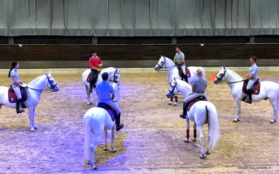 slovenie-en-famille-lipica-chevaux