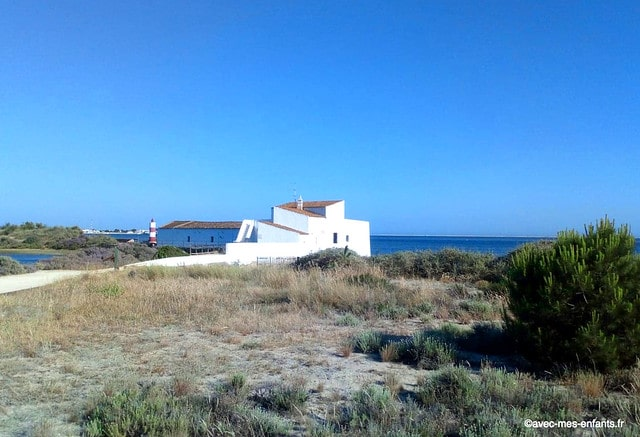 parc-naturel-ria-formosa-algarve-moulin-a-maree