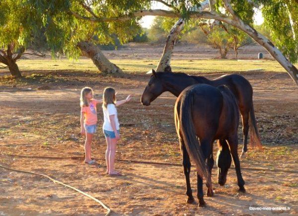 road-trip-australie-en-famille-wooramel