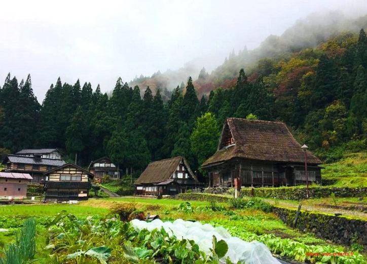japon-en-famille-campagne-alpes-japonaises