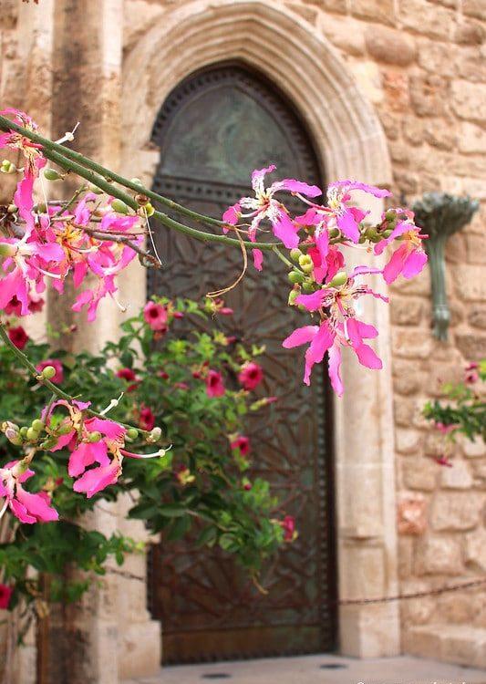 Jaffa-old-city-tel-aviv-en-famille