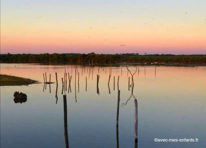 Activites avec ados a Arcachon le Teich