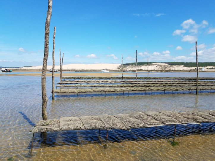 parc ostreicole huitres arcachon